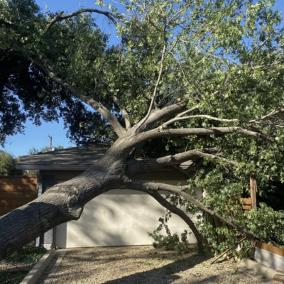 A cottonwood tree that fell onto a garage port during a tornado. There is a car in the garage so it was a dangerous tree removal