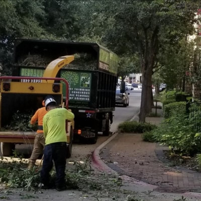 Chipper and truck with Hernandez Tree Experts wrap. Workers are putting tree into grinder.