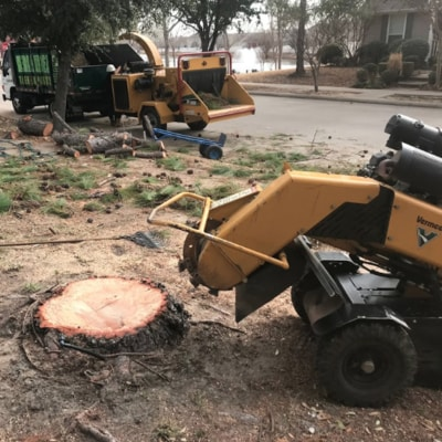 A stump grinding machine getting ready to grind up a stump of a freshly removed tree.